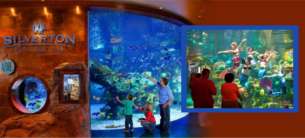 Sereias no aquário do Silverton Casino